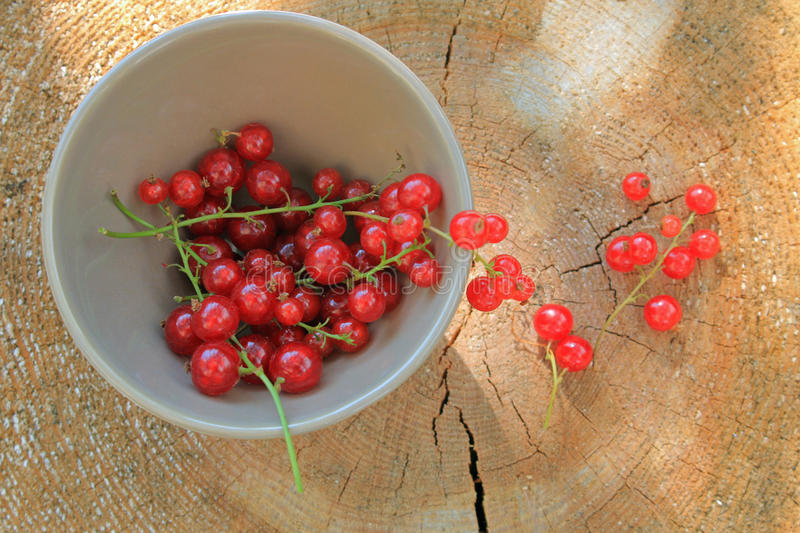 Red berries fruit in dish on wooden log stock image