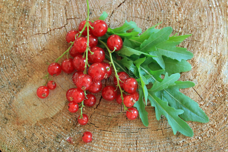 Red berries fruit and rucola on wooden log royalty free stock photography