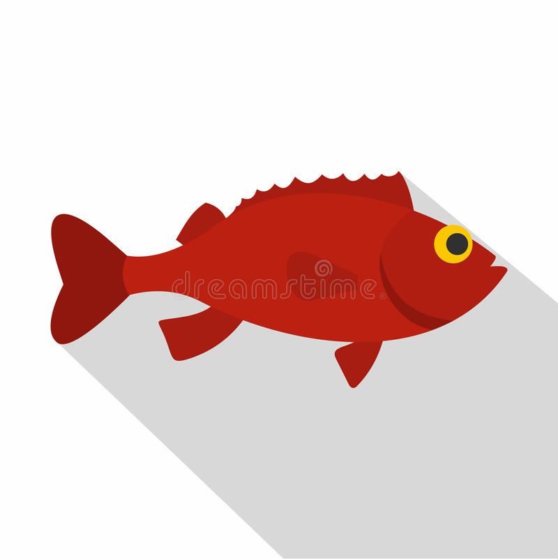 Red betta fish icon, flat style royalty free illustration
