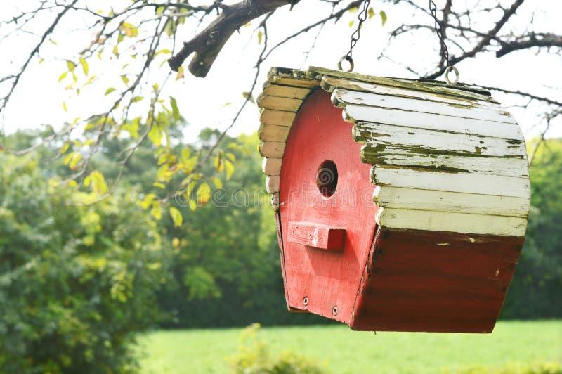 Red Bird House royalty free stock photos