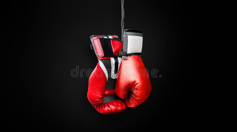 Red black grey boxing gloves hanging and ready to be used in the royalty free stock photos