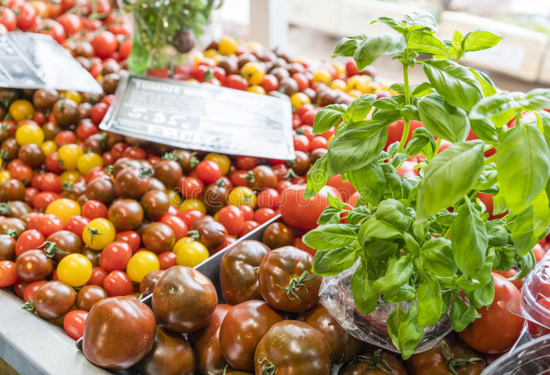 Red and black tomatoes with basil. And price signs in market in a market in Paris, France royalty free stock photo