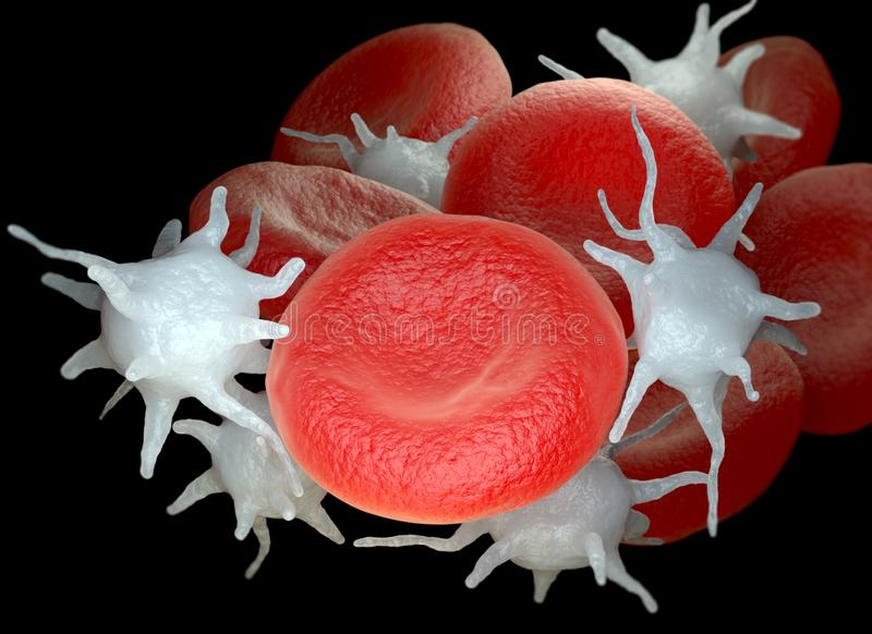 Red blood cells and activated platelets or thrombocytes vector illustration
