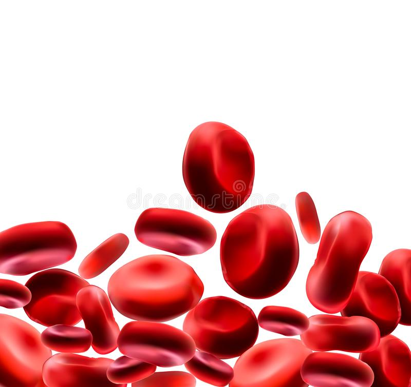 Red blood cells Use as a medical illustration is a 3D image and the word is written. royalty free illustration