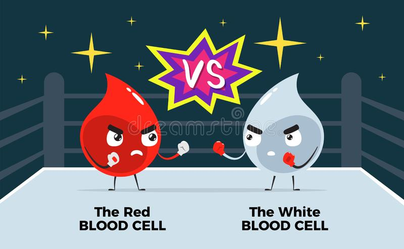 Red blood is having battle versus white blood royalty free illustration