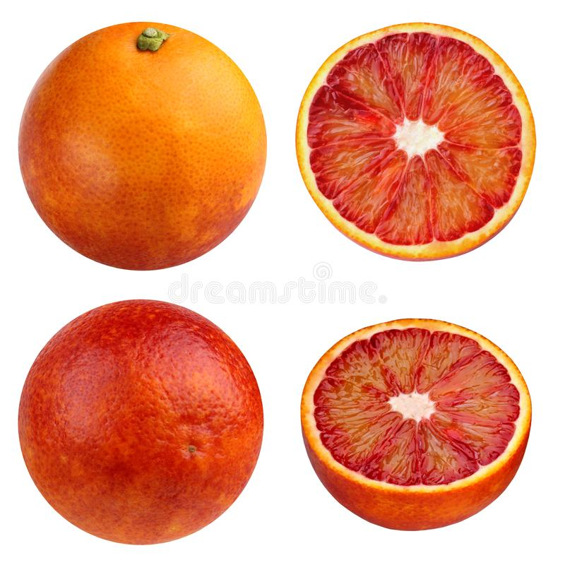 Red blood oranges isolated on white background. collection of citrus fruits stock photography