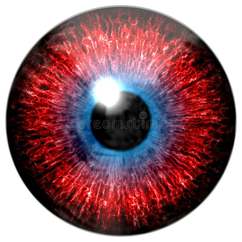 Red and blue eye texture with black fringe. And white background royalty free stock photography