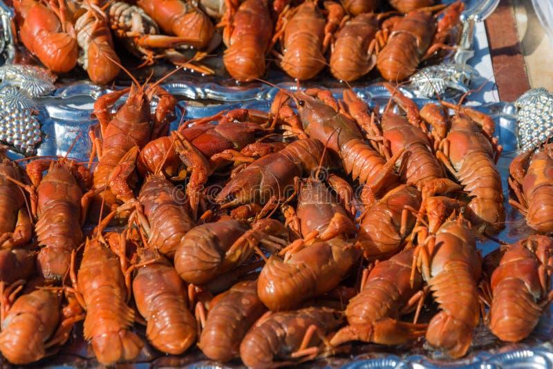Red boiled crawfish. royalty free stock image