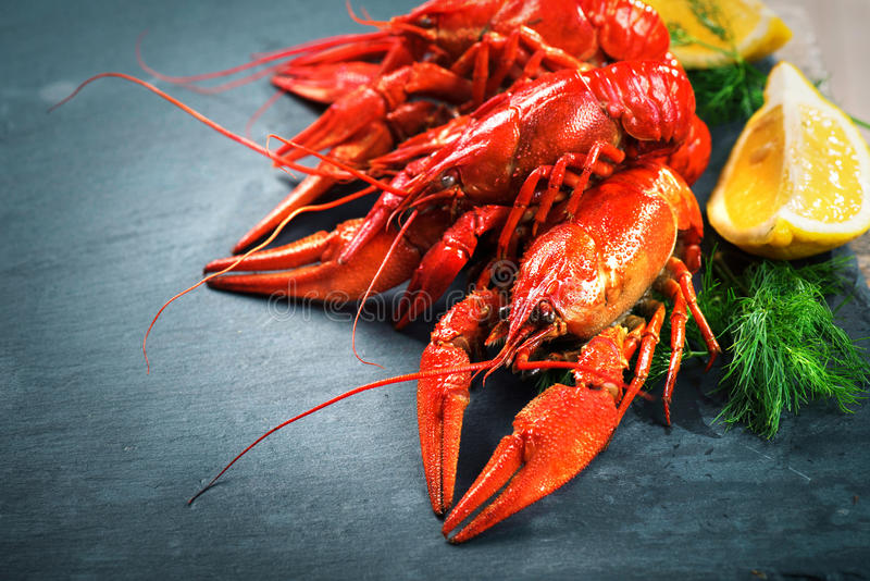 Red boiled crayfish. Crawfish. Red boiled crayfish with lemon and herbs on stone slate. Crawfish closeup stock photography