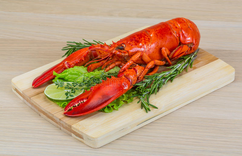Red boiled lobster royalty free stock photos