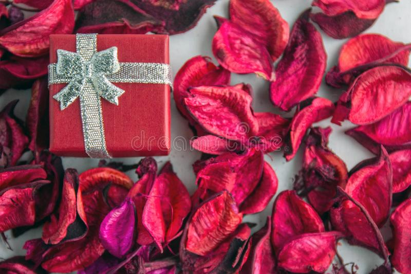 Red box for a gift with silver ribbon. Valentines day! Red box for a gift with silver ribbon and dry red petals, isolated on a white background. Top view royalty free stock image