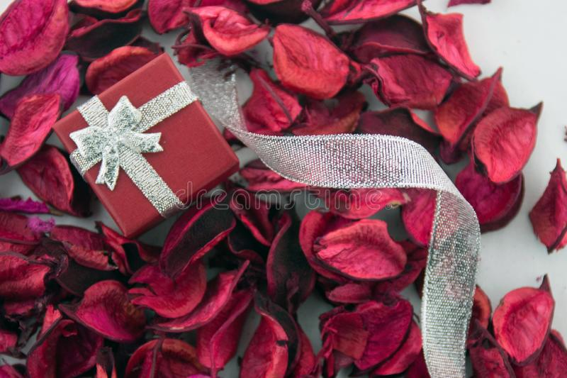 Red box for a gift with silver ribbon. Valentines day! Red box for a gift with silver ribbon and dry red petals, on a white background. Top view stock image
