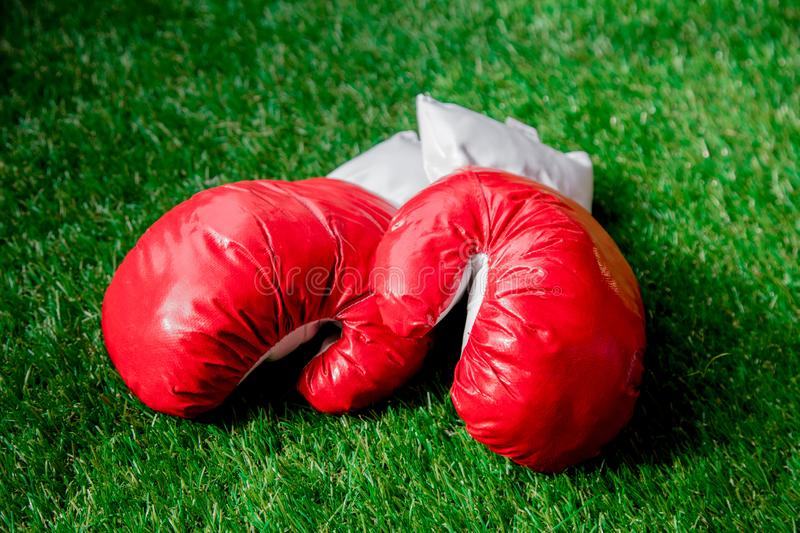 Red boxing gloves on green grass. royalty free stock image