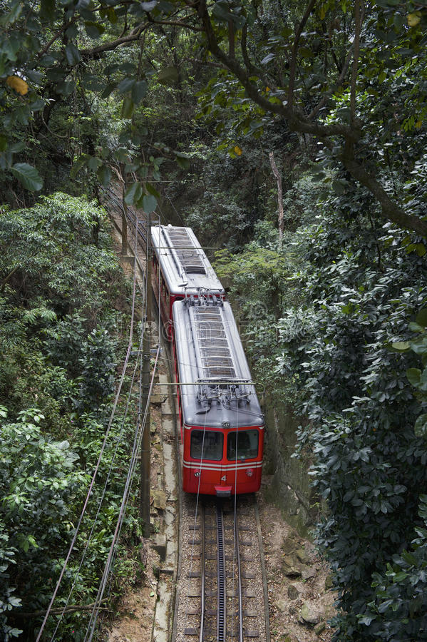 Red Brazilian Train Green Jungle Tijuca Rio Brazil. Red Brazilian train travels through thick green jungle at Tijuca National Forest in Rio de Janeiro Brazil stock photos