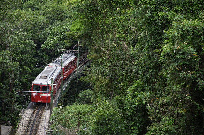 Red Brazilian Train Green Jungle Tijuca Rio de Janeiro. Red Brazilian train travels through thick green jungle at Tijuca National Forest in Rio de Janeiro Brazil royalty free stock photos
