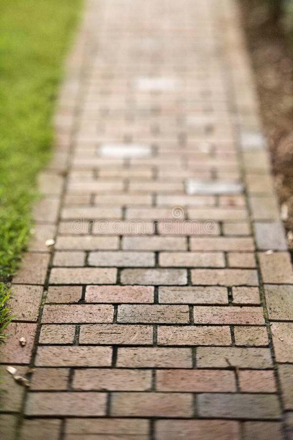 Download Red Brick Walkway stock image. Image of outdoors, copy - 12543667