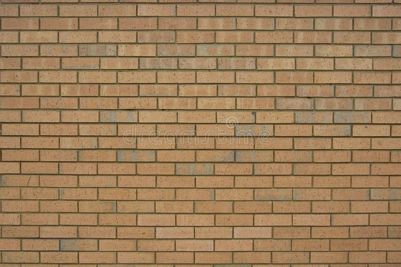 Red brick wall for background texture. Old, english brick wall stock images