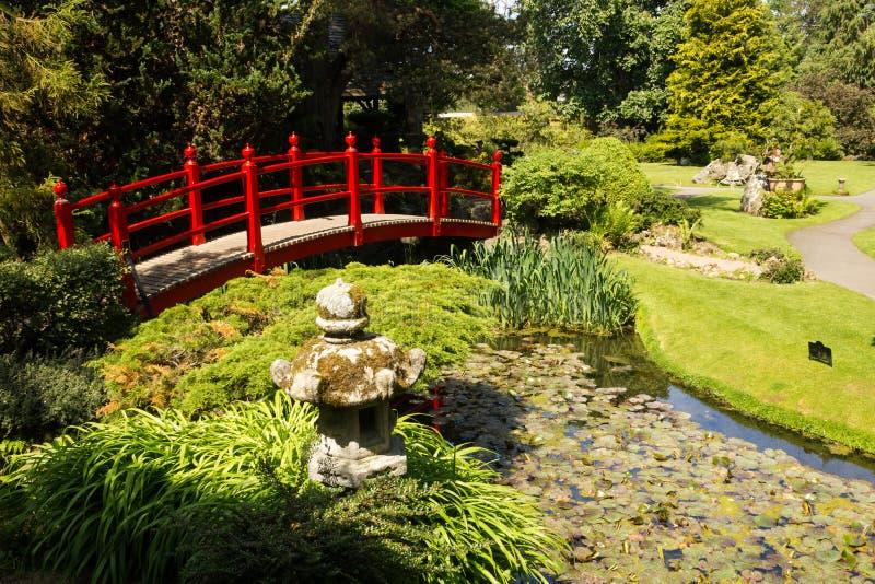 Red bridge. Irish National Stud's Japanese Gardens. Kildare. Ireland royalty free stock images