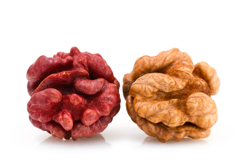 Red and Brown Walnut royalty free stock image