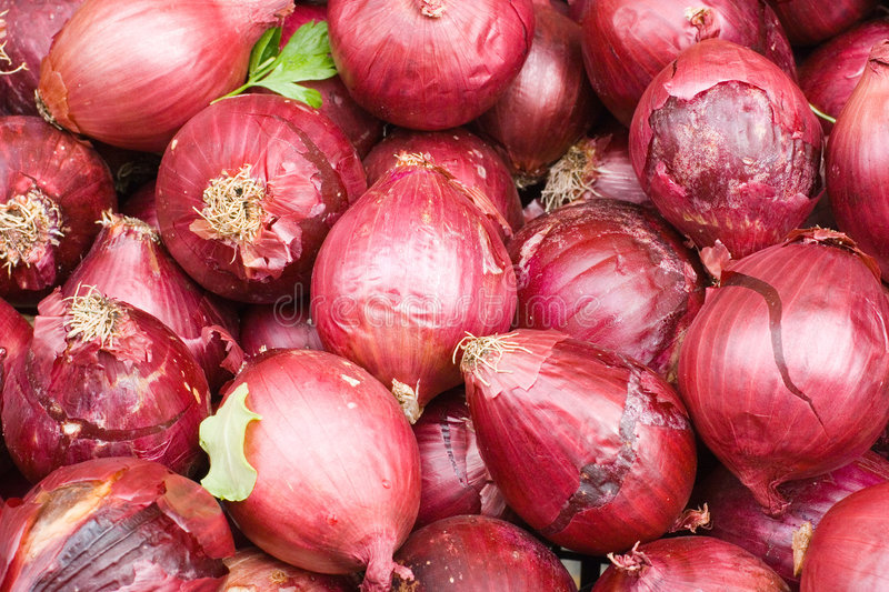 Red bulb onion. Fresh organic red bulb onion for sale at a market for farm products royalty free stock photos