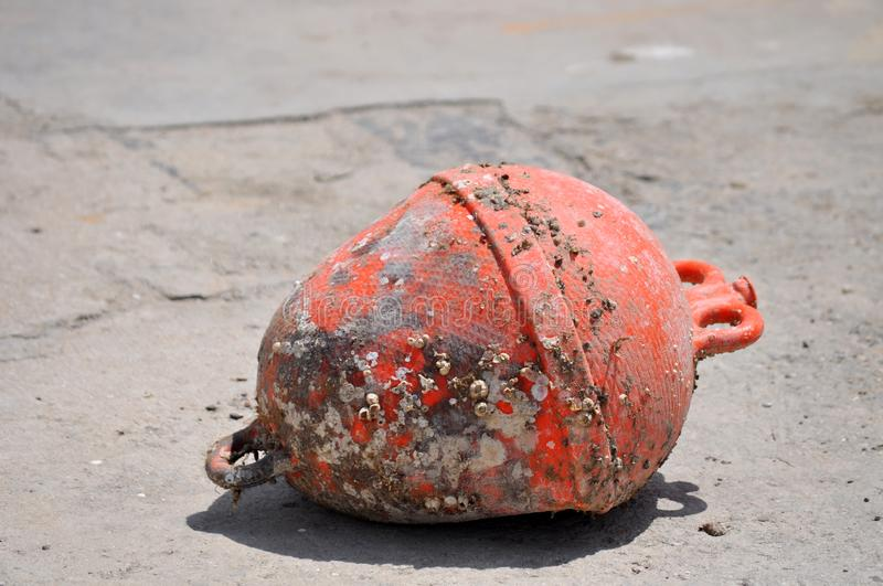 Red buoy out of the water. Red buoy, which is out of the water and is covered with polyps royalty free stock photography