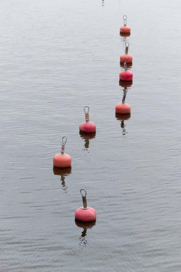 Red buoys royalty free stock photo
