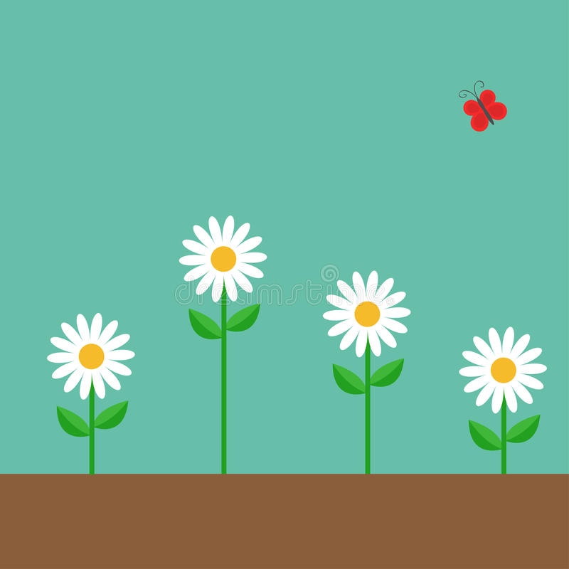 Red butterfly. White daisy chamomile set. Cute growing on ground flower plant. Love card. Camomile icon. Flat design. Green backgr vector illustration