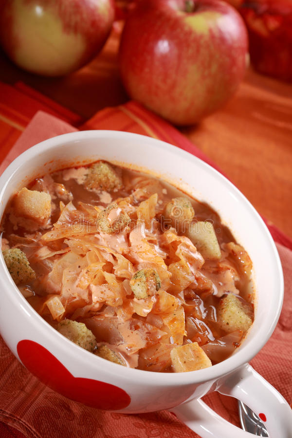 Red cabbage soup (sauerkraut) stock photography