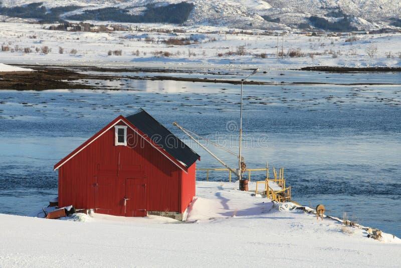 Red cabin on fjordside. Red fisherman's cabin on the Lofoten islands fjord of Napp stock images