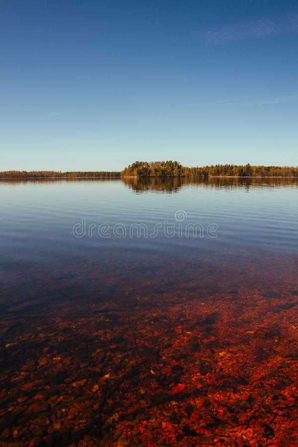 Red, calm lake and distant forest stock photography