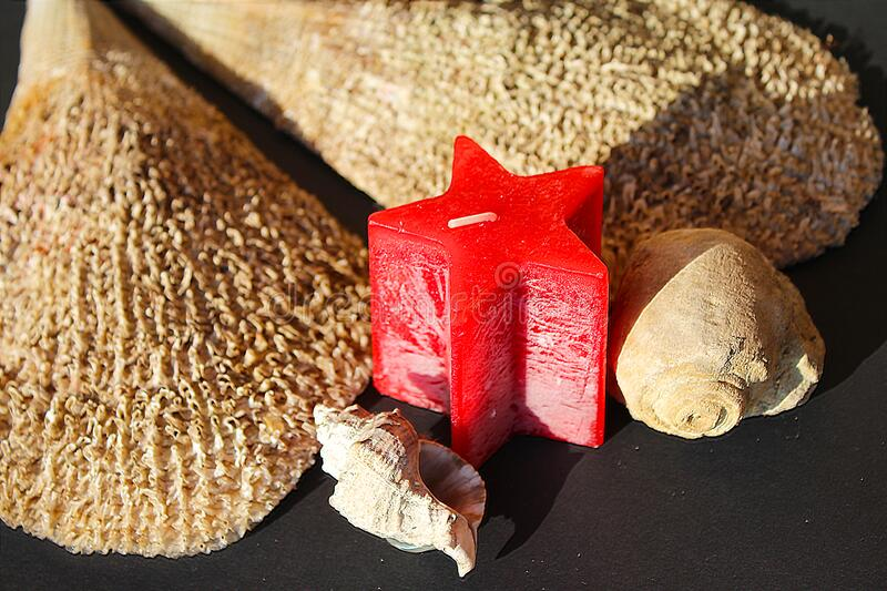 Red candle with Pinna nobilis, noble pen shells, macro photography, closeup. Red candle with Pinna nobilis, noble pen shells, noble pen shell in hand, macro royalty free stock image