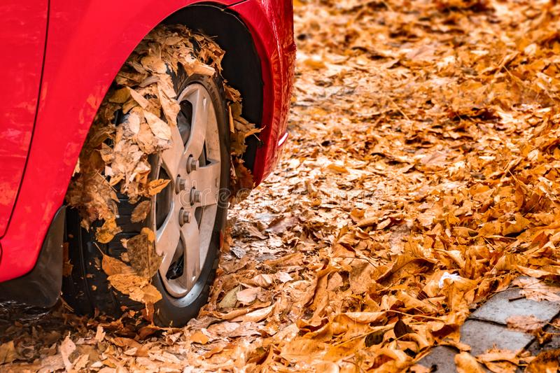 Red car wheel autumn leaves royalty free stock photo