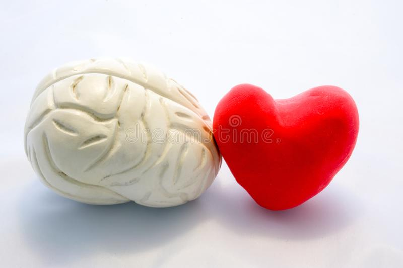 Red card heart shape and figure of human brain standing next to next to each other on white background. Connection heart and brain. In couple or choice for who royalty free stock photo