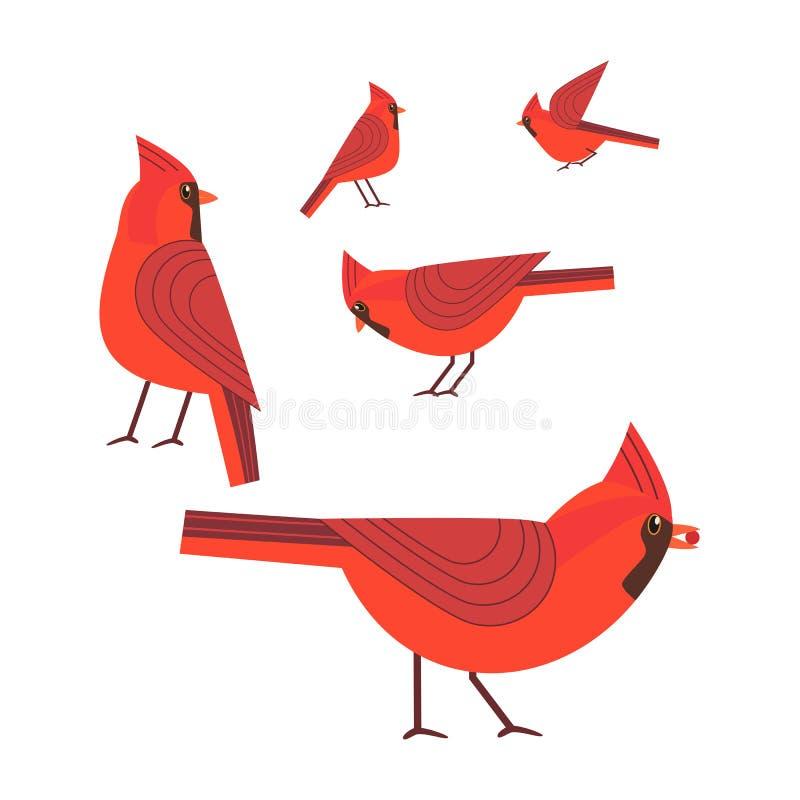 Red cardinal bird set vector illustration
