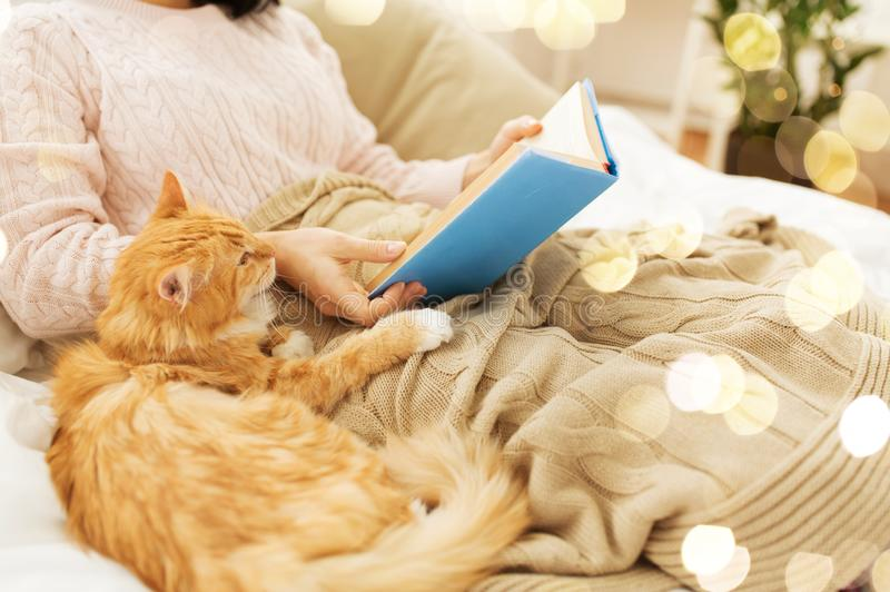 Red cat and female owner reading book at home royalty free stock photos