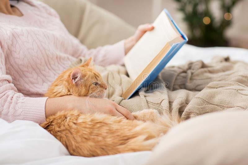 Red cat and female owner reading book at home. Pets, hygge and people concept - close up of red tabby cat and female owner reading book in bed at home stock photography