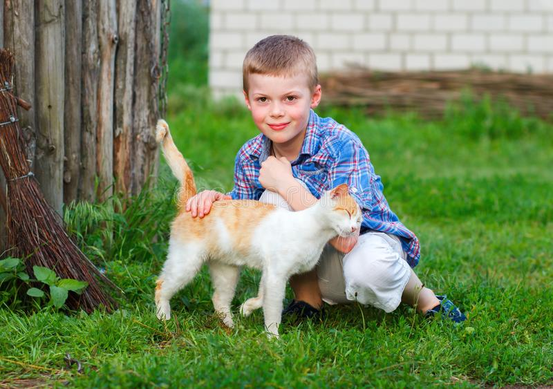 Red cat tenderly rubs against the hand of a little boy royalty free stock photos