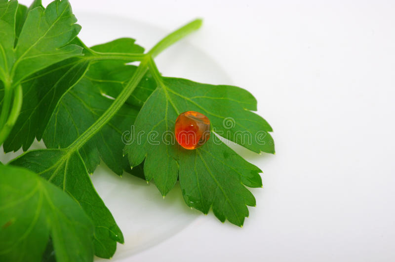 Download Red caviar stock image. Image of dressing, medical, diet - 12483149