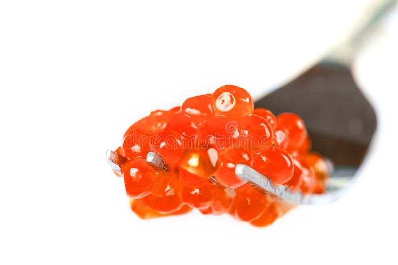 Red caviar on a metal fork. Extreme closeup royalty free stock photos