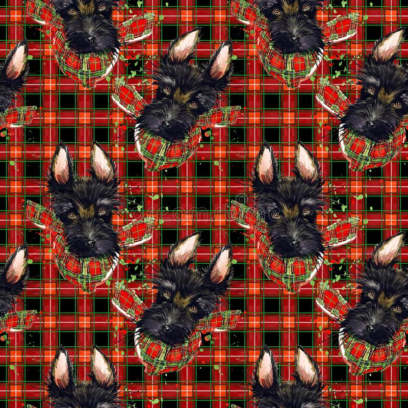 Red checked fabric pattern. scotch terrier dog on the check plaid seamless texture. watercolor tartar background. vector illustration