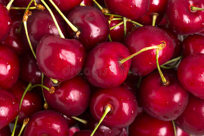 Download Red cherries stock image. Image of drupe, healthy, heaped - 15045123