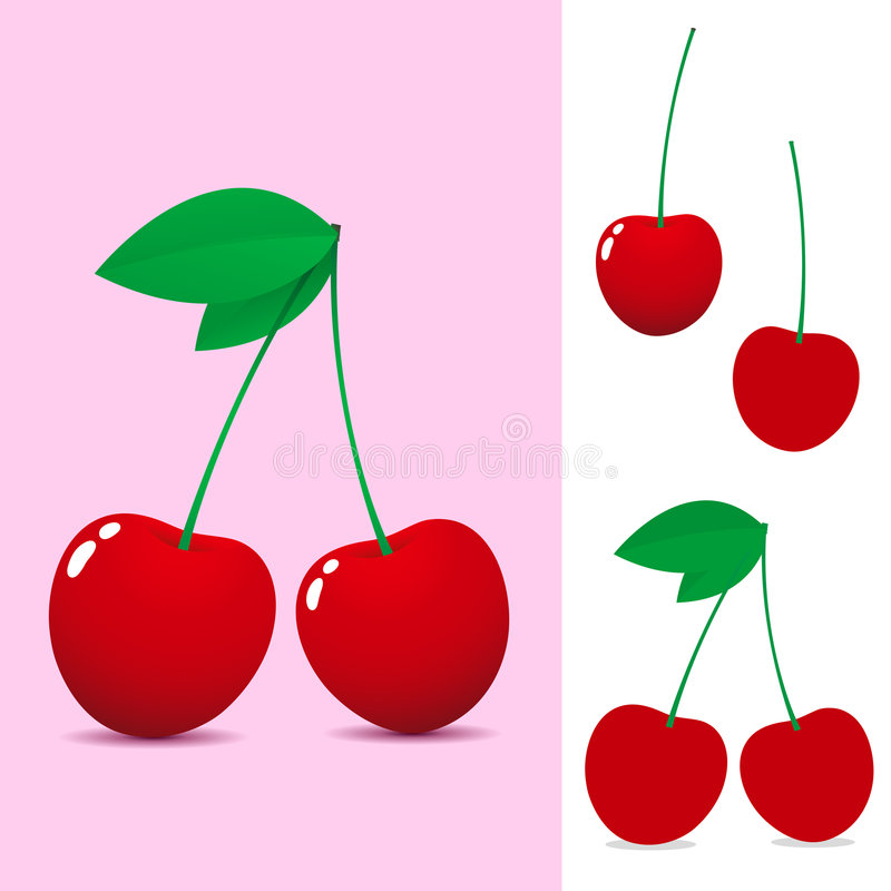 Red cherry. On pink background stock illustration