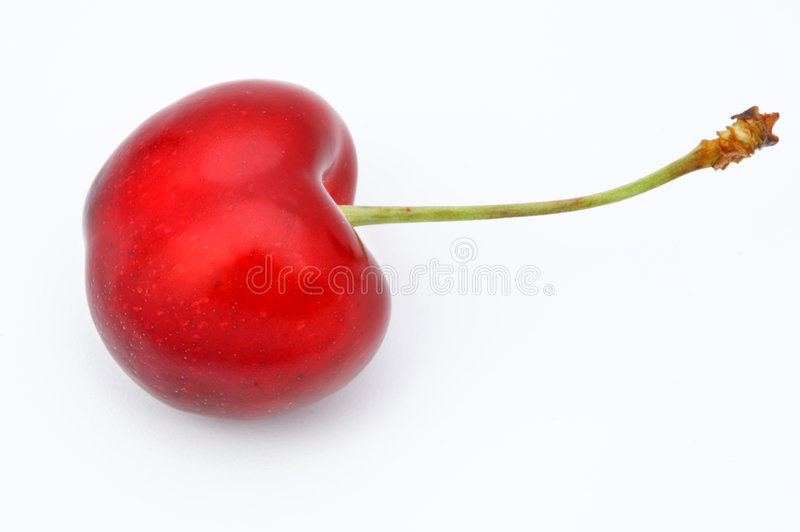 Red cherry royalty free stock image
