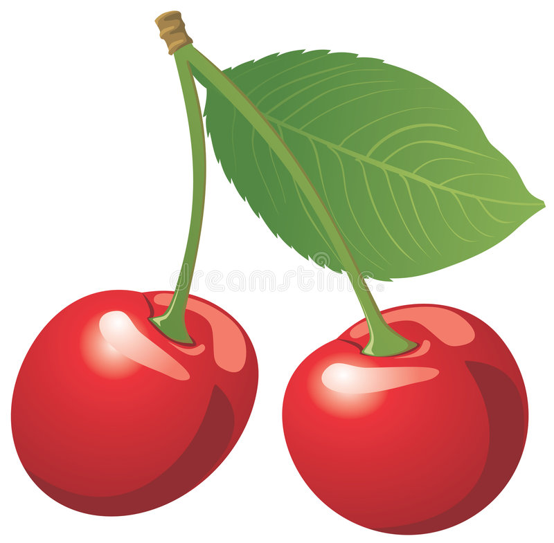 Red cherry isolated on white stock photo