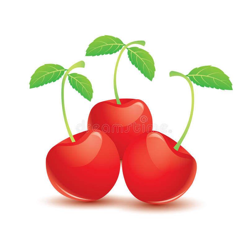 Red cherry. Three sweet ripe red cherry berries with leaves on white background. Vector illustration stock illustration