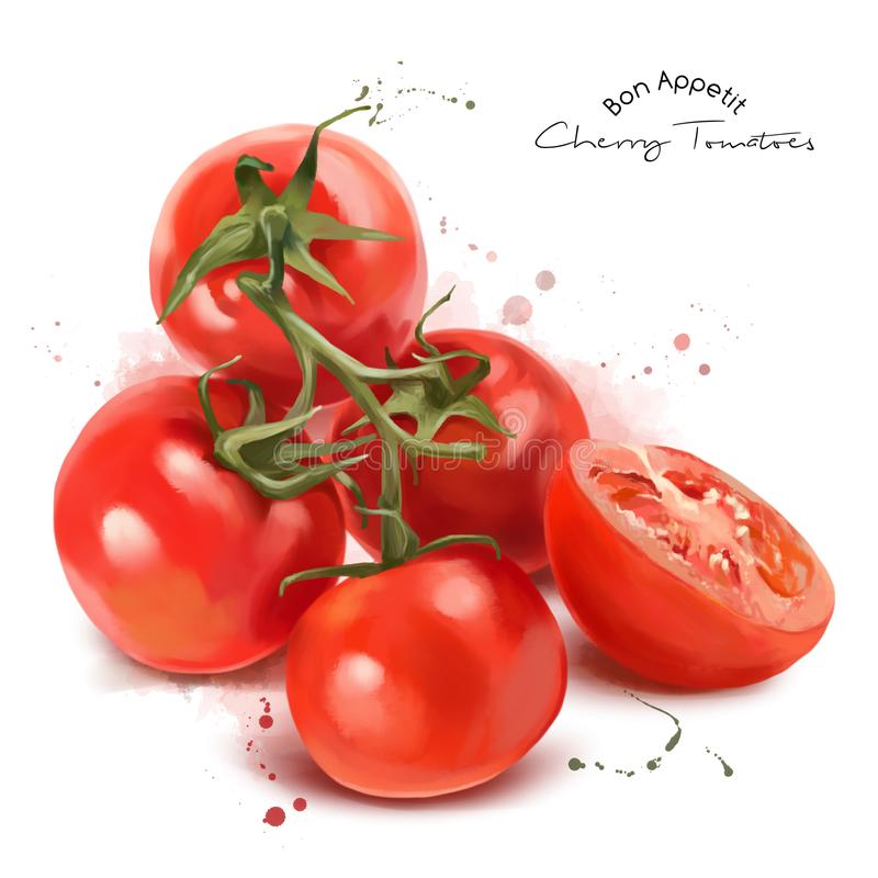 Red cherry tomatoes and spray. Watercolor painting royalty free illustration