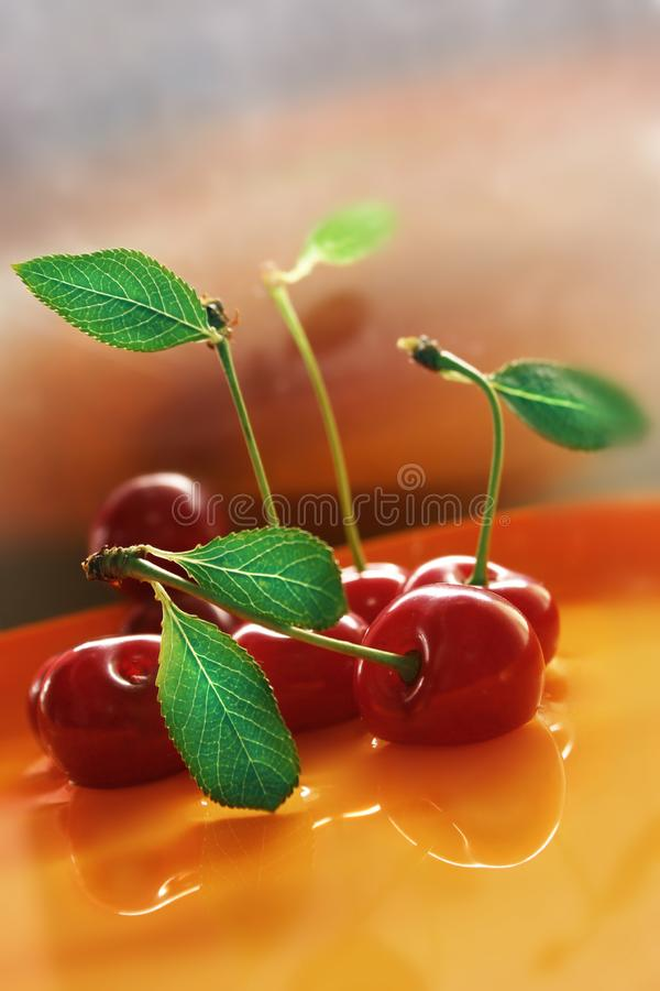 Red cherry with water stock image