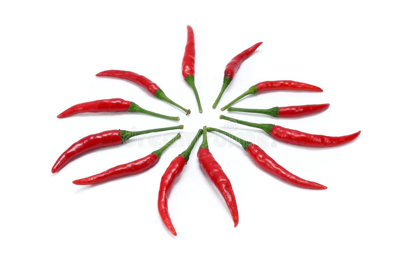 Download Red chili stock image. Image of taste, ingredient, chilly - 25640127