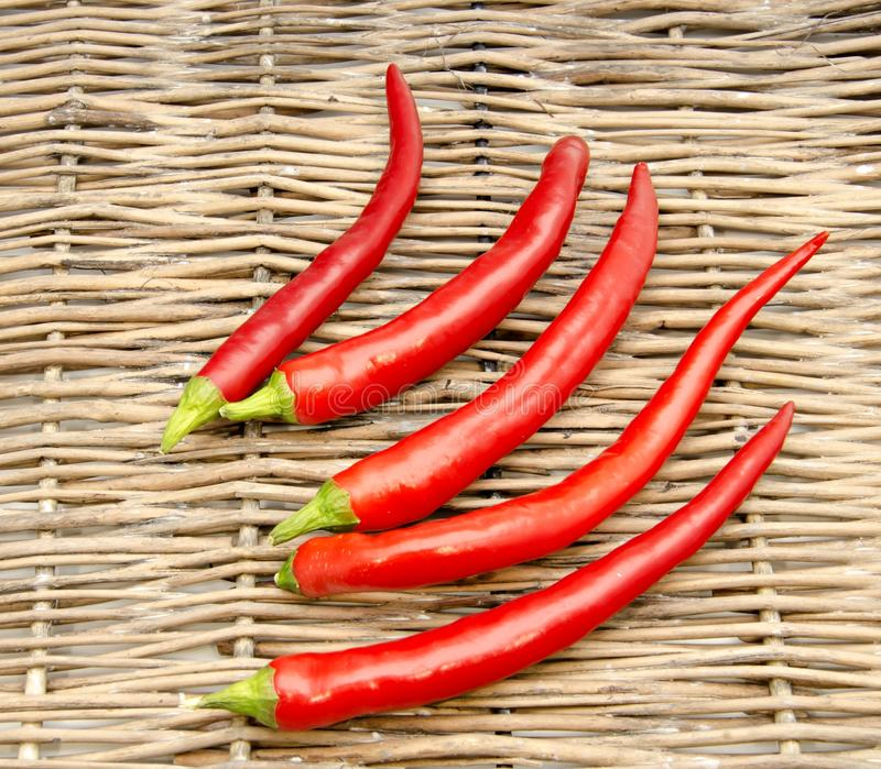 Download Red chili stock image. Image of flower, food, fruit, dinner - 29293819