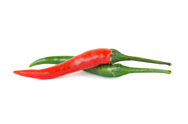 Red chili or chilli cayenne pepper isolated. On white background royalty free stock photo